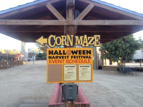 Event schedule for the Harvest Festival at Pierce College on Oct. 6. Photo credit: