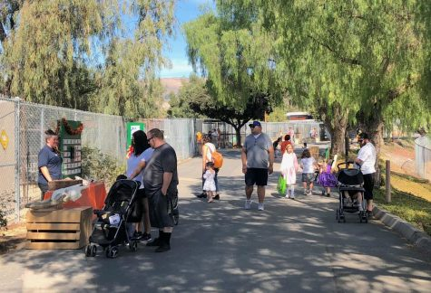 Moorpark zoo held a Halloween themed weekend for the community to learn further about conservation