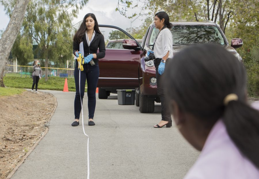 Sabrinah Gallo-Luna, a criminal justice major, extends the tape measure on the mock crime scene by the service road on the east side of Moorpark College. Gallo-Luna acts as the assistant lead detective alongside the lead detective, Courtney Williams. Photo credit: Evan Reinhardt