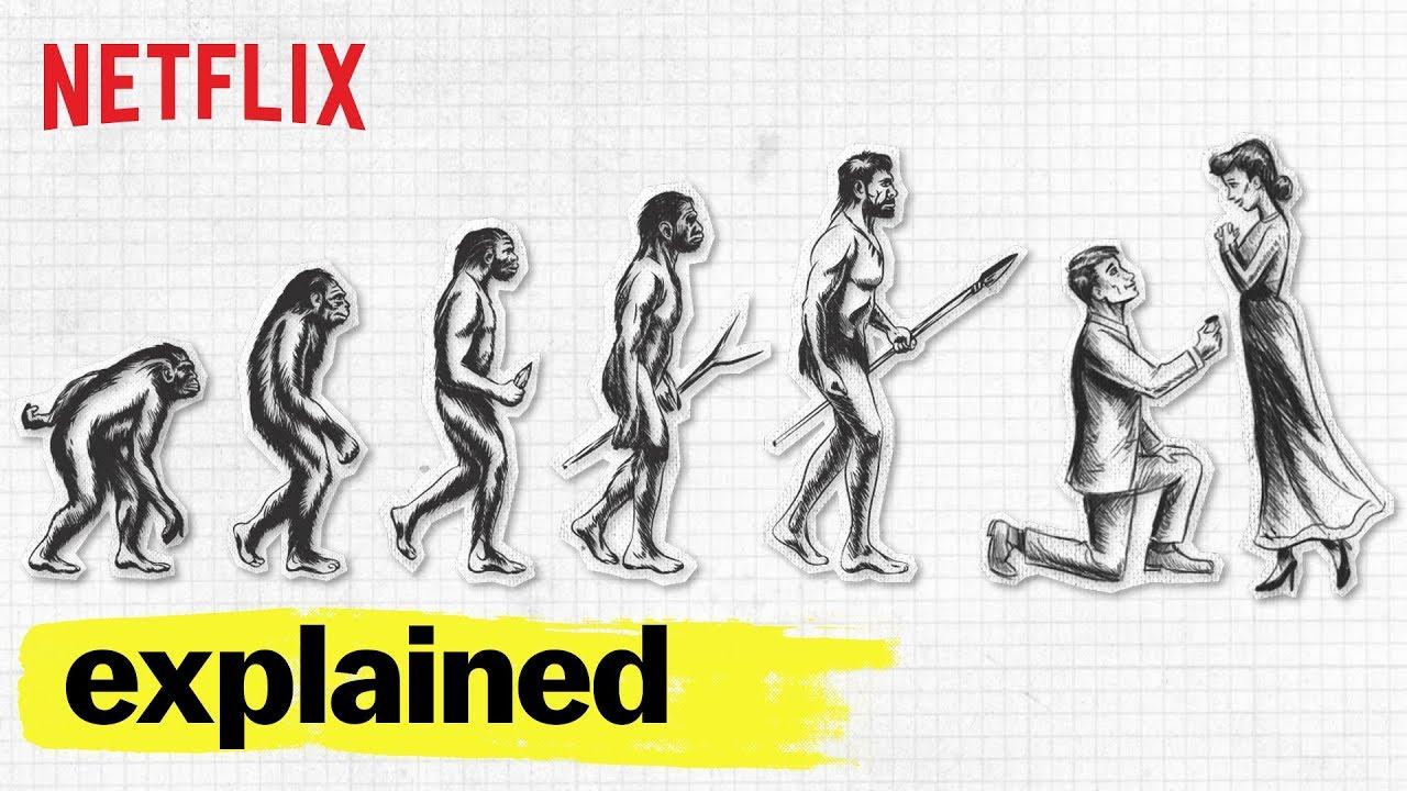 Explained.jpg
