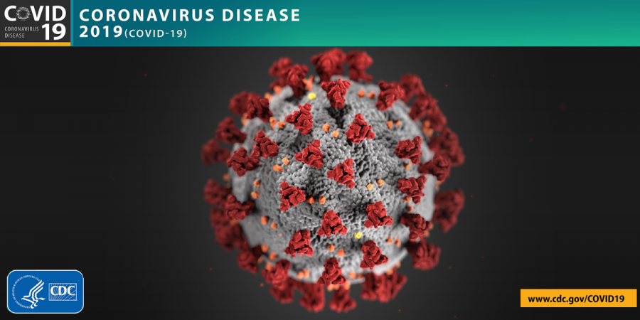 Image courtesy of the Center for Disease Control and Prevention.