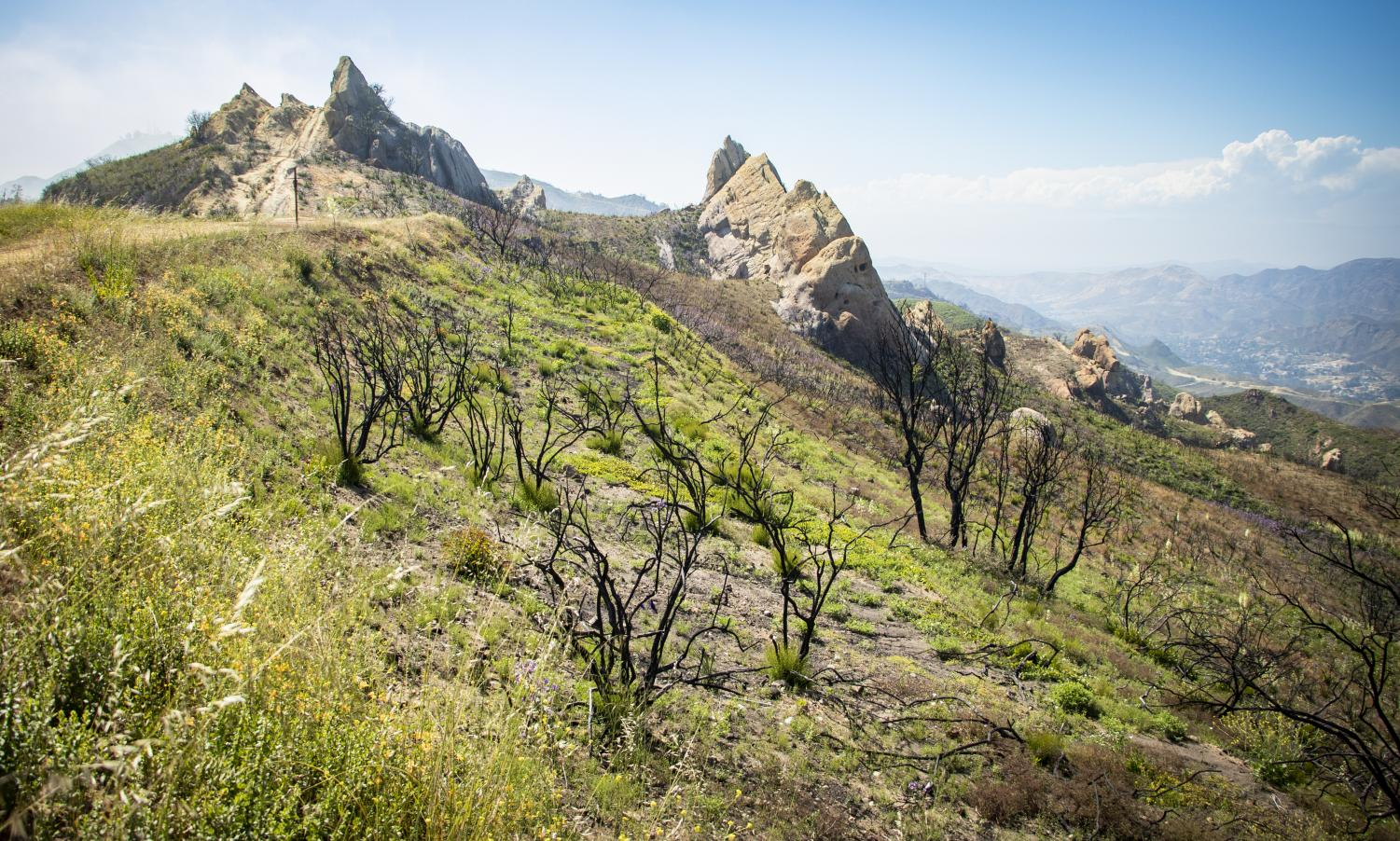 View of the of the Santa Monica Mountains off of Corral Canyon Road in Malibu Calif. on June 22, 2019.