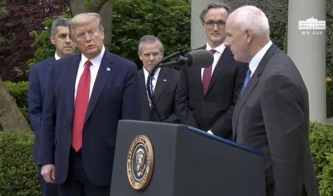President Donald Trump watches as Warner Thomas, CEO and president of Ochsner Health System, during the press briefing on Tuesday April 14, in  the White House Rose Garden. Image taken from whitehouse.gov via live stream.