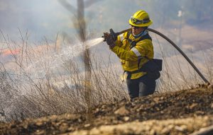 Jordan Murren, a firefighter with the L.A. County Fire Department, works to put out hotspots from the Country Fire in Thousand Oaks, CA. on Thursday, April 29. The Country Fire grew to 28 acres before being contained. Photo credit: Ryan Bough