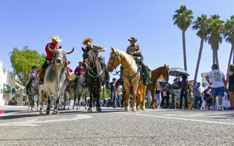 The Ventura County Sheriffs Office Mounted Enforcement Unit (MEU) joins the horses and bull in the parade on Saturday Oct. 2, 2021 in Moorpark, CA. Photo credit: Clayton Cruz